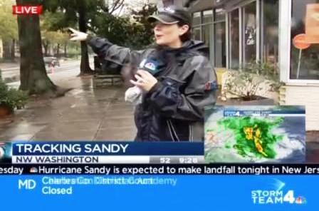 hurricanehorse_sandy_stormteam_wtf